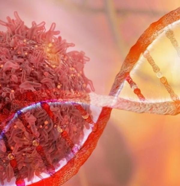 Yếu tố di truyền: Ung thư vú có tính di truyền không? Nếu có người nhà ung thư vú thì nên làm thế nào?